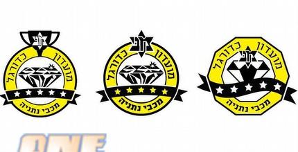 קול הקהל: אוהדי נתניה יבחרו את הלוגו החדש