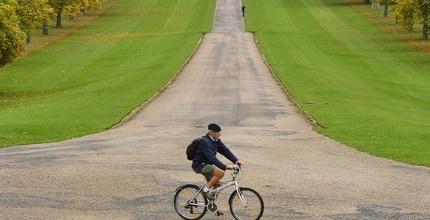 רוכב אופניים (רויטרס)