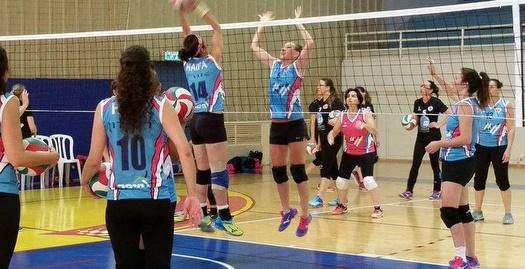 לראשונה: אלופת כדורשת במכביה - קבוצת חיפה