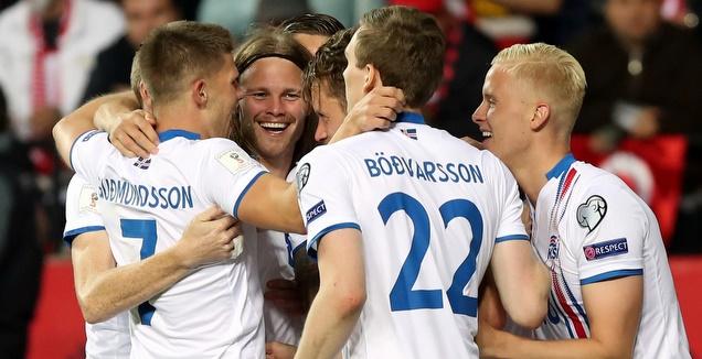 שחקני נבחרת איסלנד חוגגים (רויטרס)