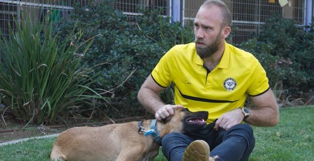 מפוארת מכבי נתניה בכדורגל מאמצת את כלביית נתניה NX-98