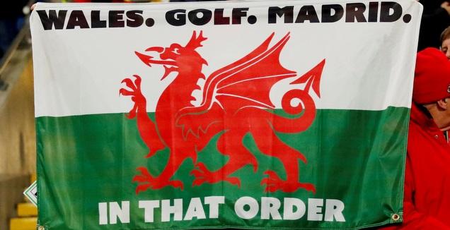 הדגל שבייל החזיק בסיום המשחק (רויטרס)