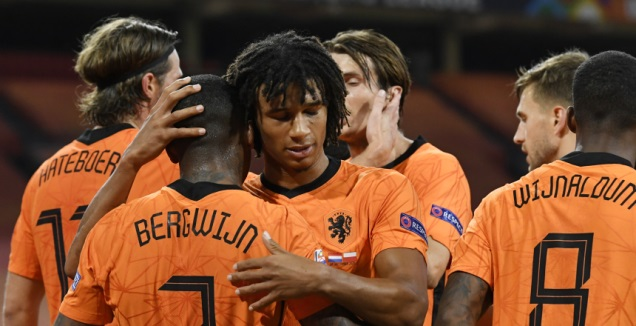 שחקני הולנד חוגגים עם ברחווין (רויטרס)