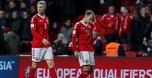 ניפגש בגומלין: 0:0 מאכזב בין דנמרק לאירלנד