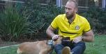 מכבי נתניה בכדורגל מאמצת את כלביית נתניה