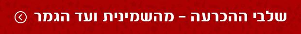 שלבי הנוקאאוט - מהשמינית ועד הגמר