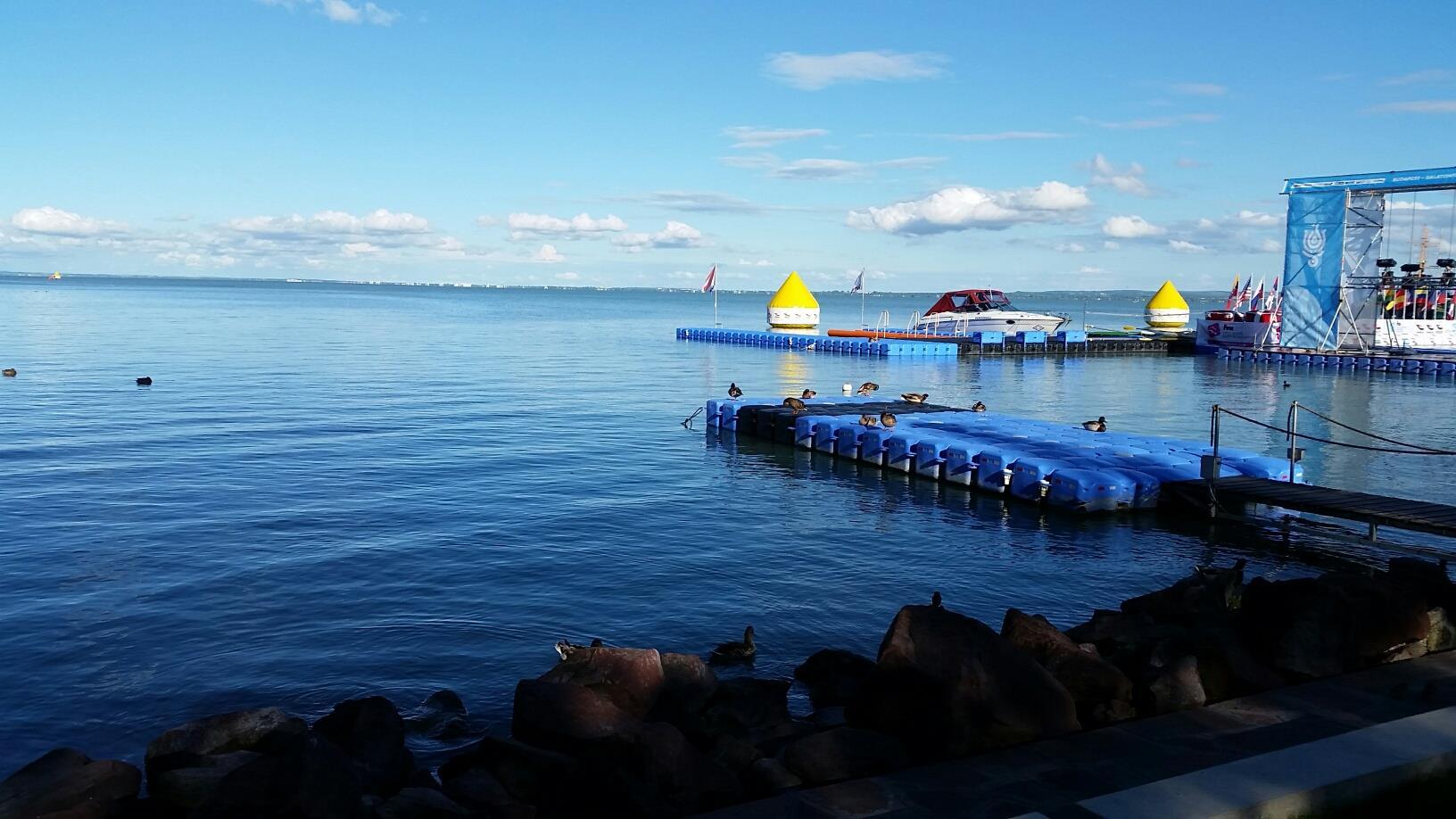 נבחרת ישראל באליפות הונגריה וסבב גביע העולם במים פתוחים