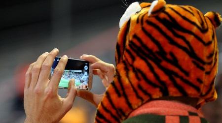דבר כזה עוד לא ראיתם: נמר מחזיק סמארטפון (שי לוי)