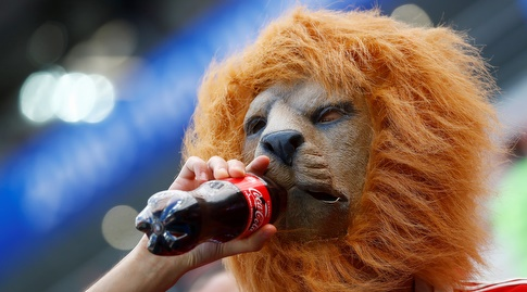 האריה המרוקאי בהפסקת שתייה (רויטרס)