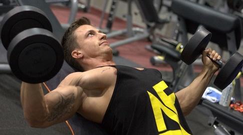 שריר החזה. תפקידו הוא לקרב את הזרועות אחת לשניה לכיוון מרכז הגוף (מערכת ONE)