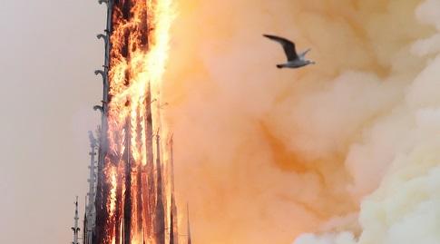הלהבות בקתדרלת נוטרדאם (רויטרס)