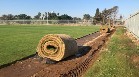 מבצע העברת הדשא לאצטדיון בלומפילד (עמית קרקו)
