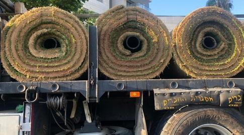 המשאית הראשונה עם הדשא יוצאת לכיוון אצטדיון בלומפילד (עמית קרקו) (מערכת ONE)