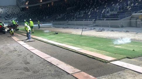 הדשא נפרס באצטדיון בלומפילד (עמית קרקו)