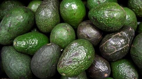 אבוקדו. גם טעים, וגם מכיל שומן נהדר (רויטרס)