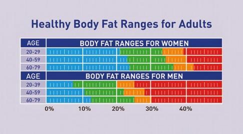 פירוט מלא של אחוזי שומן רצויים על פי גיל ומין (מערכת ONE)