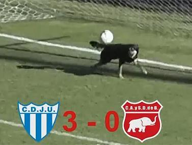 רגע בלתי צפוי מהליגה השלישית בארגנטינה