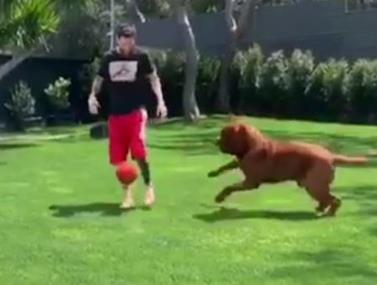 ליאו מסי מנצל את הזמן הפנוי שלו במשחק משפחתי עם הכלב